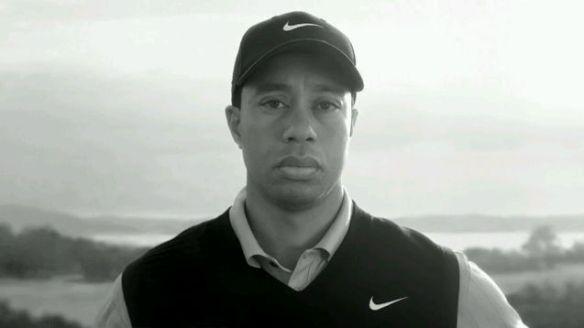 Link zum neuen Tiger-Clip auf YouTube